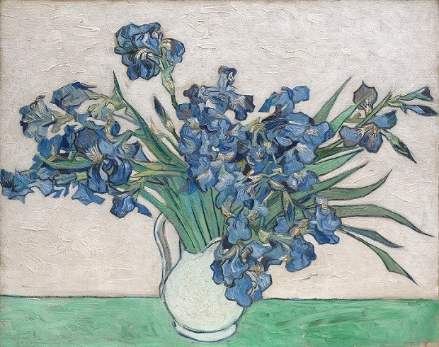 van gogh, flowers, irises, painting